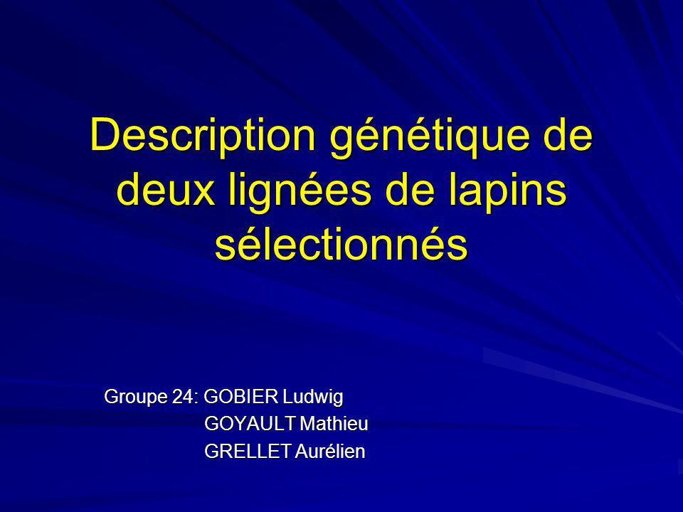 Description génétique de deux lignées de lapins sélectionnés