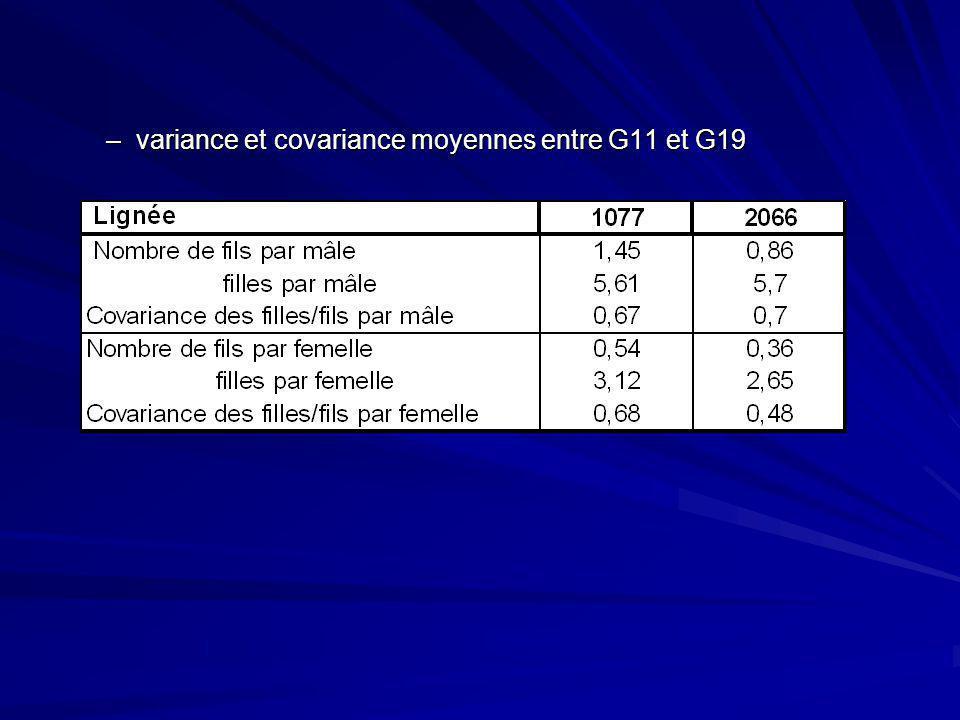 variance et covariance moyennes entre G11 et G19