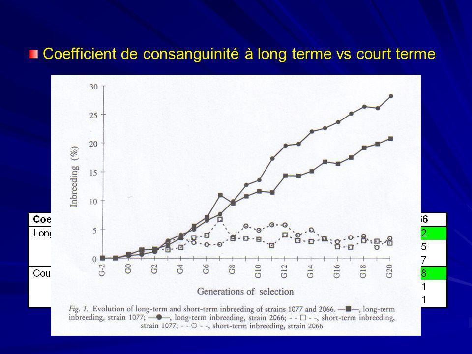 Coefficient de consanguinité à long terme vs court terme