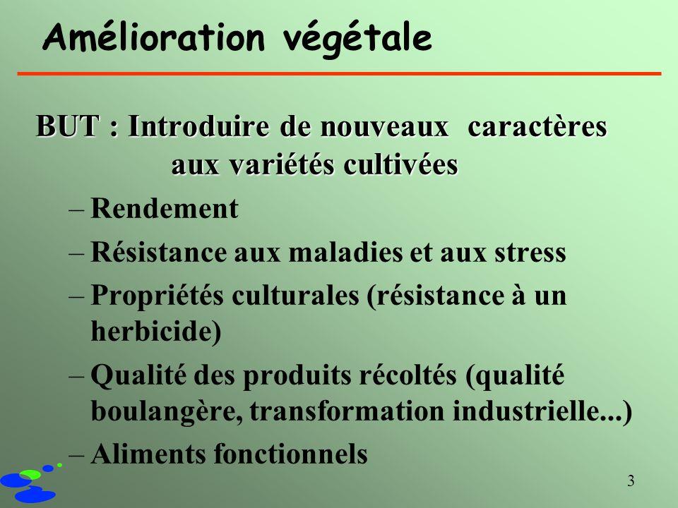 Amélioration végétale