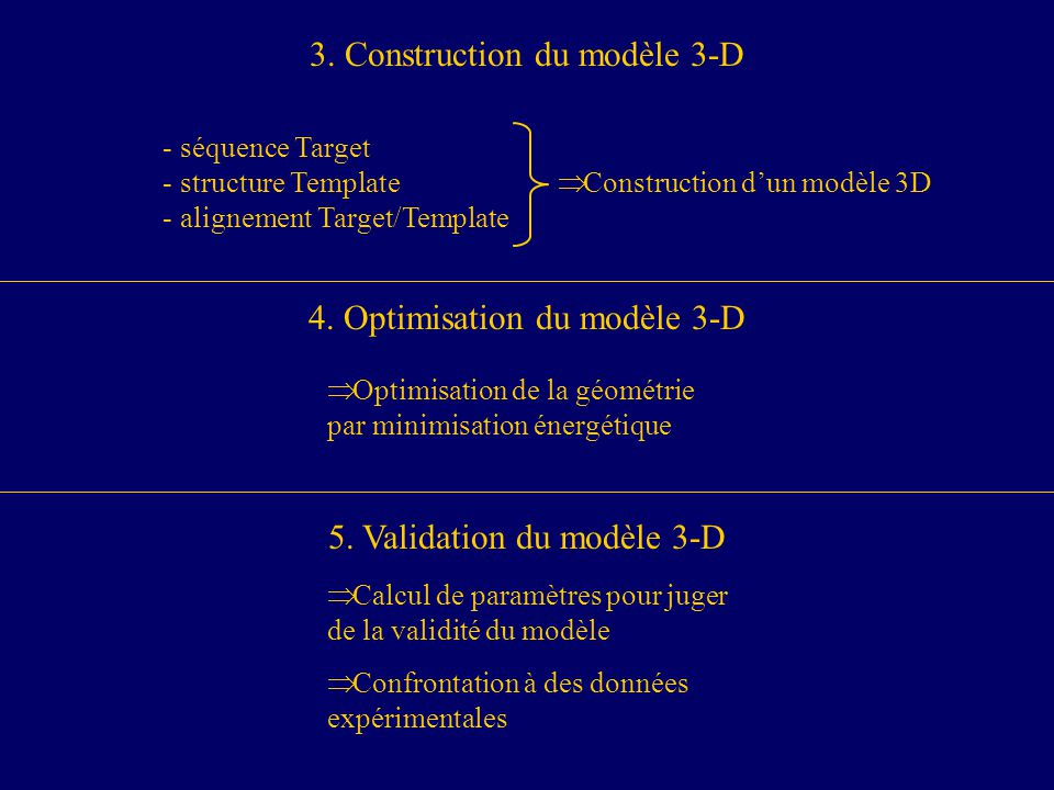 3. Construction du modèle 3-D