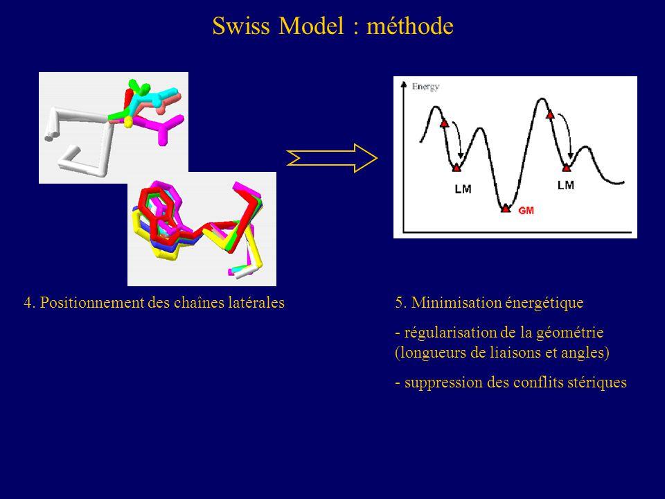 Swiss Model : méthode 4. Positionnement des chaînes latérales