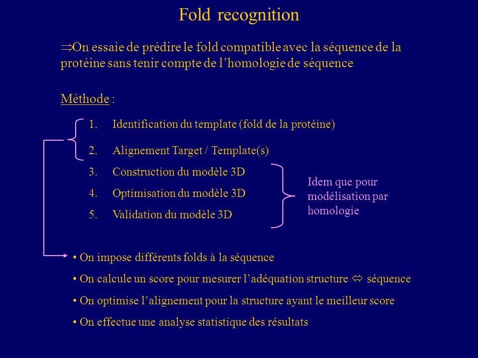 Fold recognition On essaie de prédire le fold compatible avec la séquence de la protéine sans tenir compte de l'homologie de séquence.
