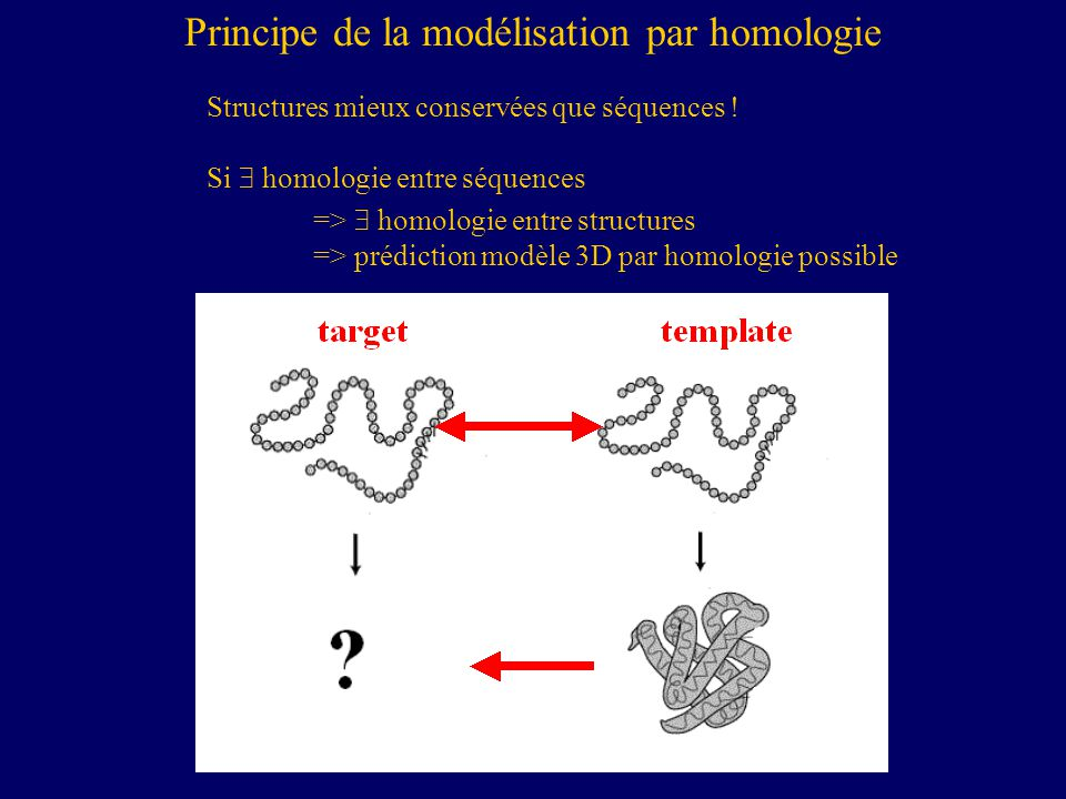 Principe de la modélisation par homologie
