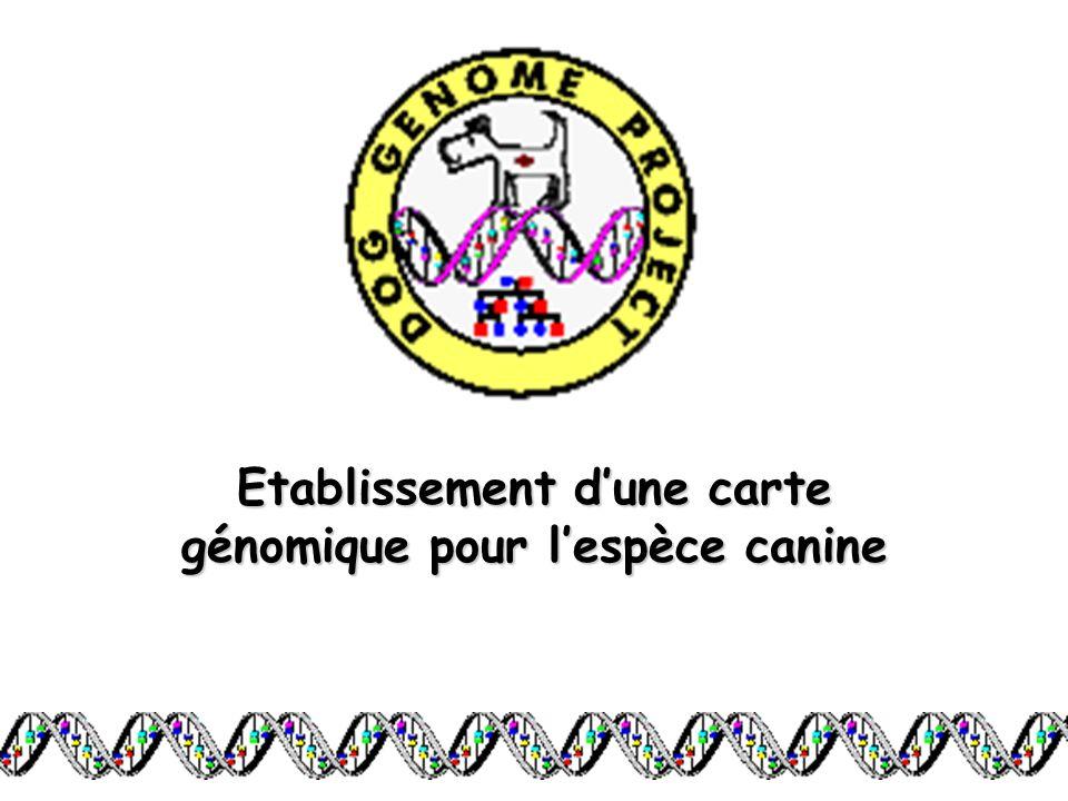 Etablissement d'une carte génomique pour l'espèce canine