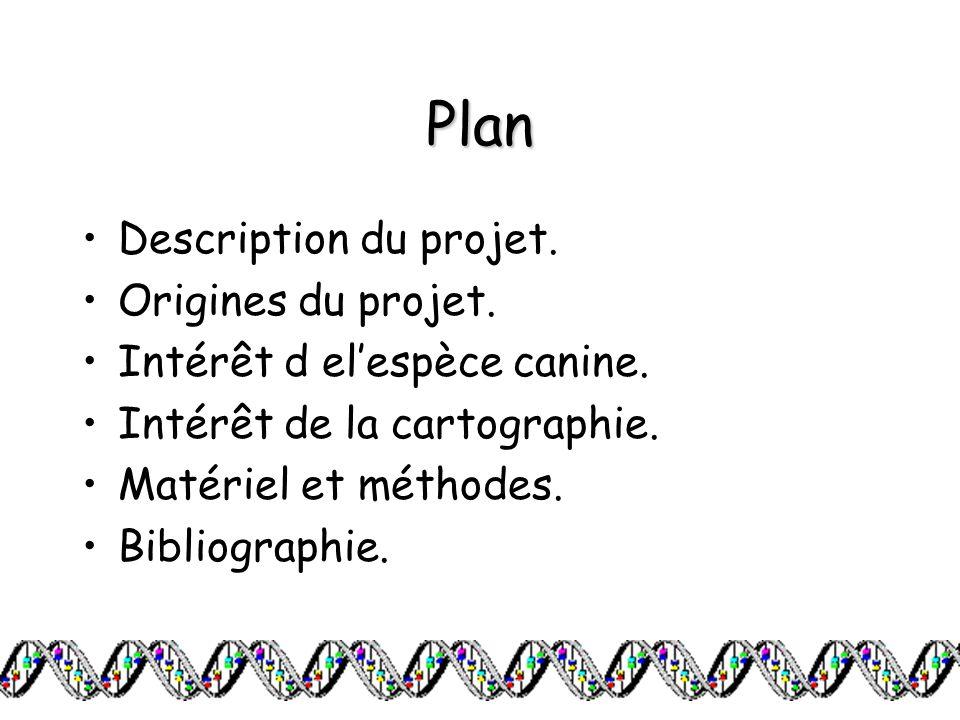 Plan Description du projet. Origines du projet.