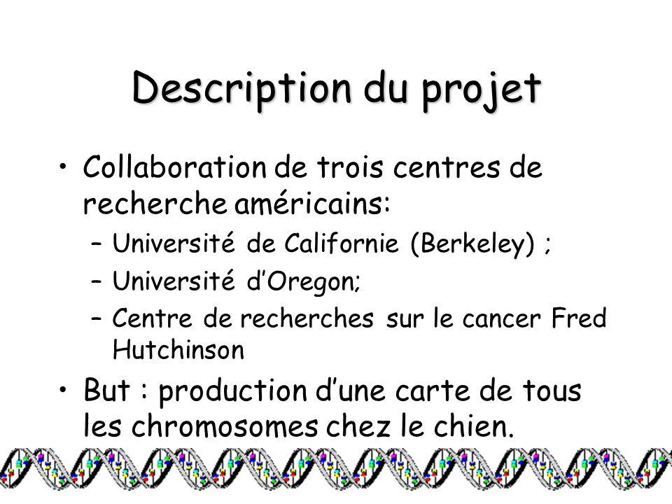 Description du projet Collaboration de trois centres de recherche américains: Université de Californie (Berkeley) ;