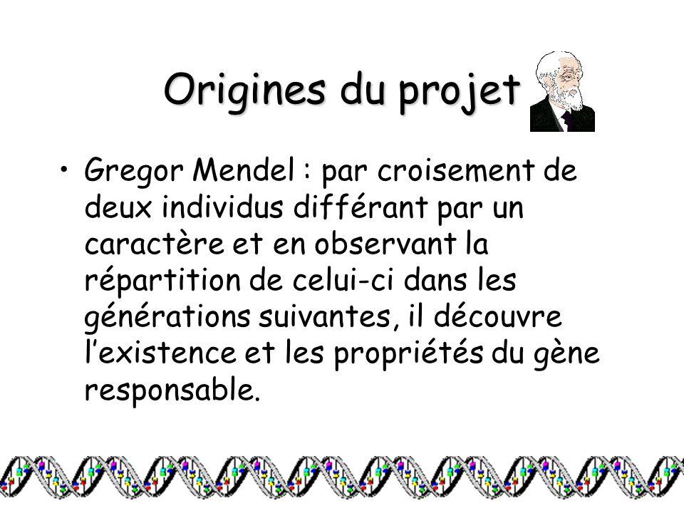 Origines du projet