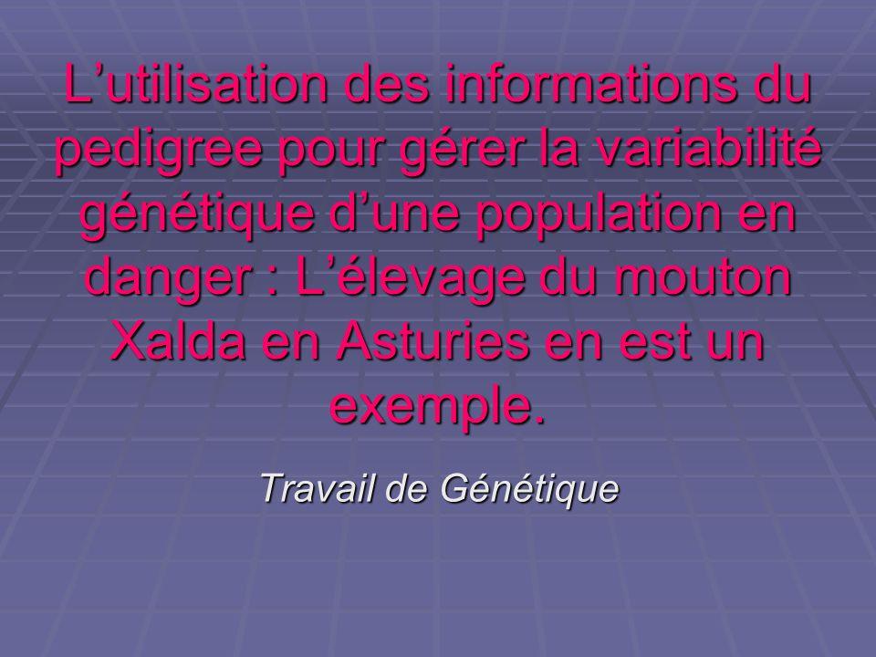 L'utilisation des informations du pedigree pour gérer la variabilité génétique d'une population en danger : L'élevage du mouton Xalda en Asturies en est un exemple.