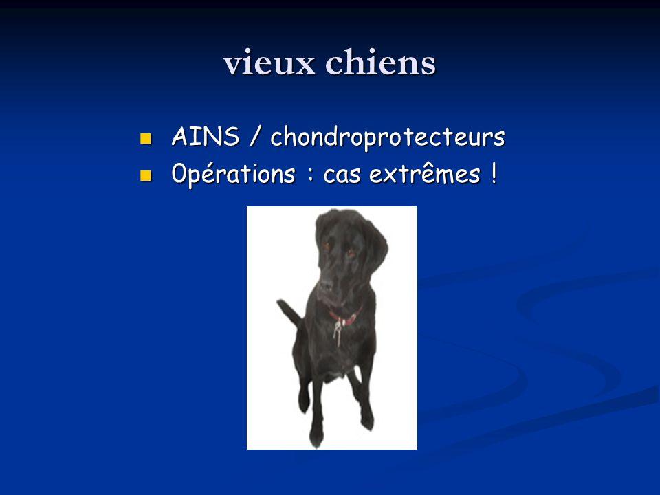 vieux chiens AINS / chondroprotecteurs 0pérations : cas extrêmes !