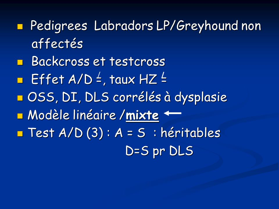 Pedigrees Labradors LP/Greyhound non