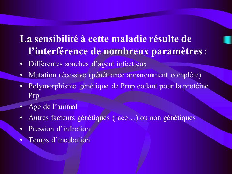 La sensibilité à cette maladie résulte de l'interférence de nombreux paramètres :