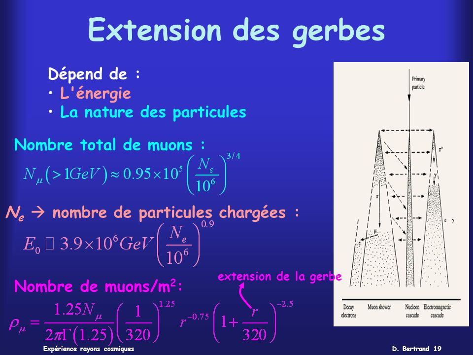 Extension des gerbes Dépend de : L énergie La nature des particules