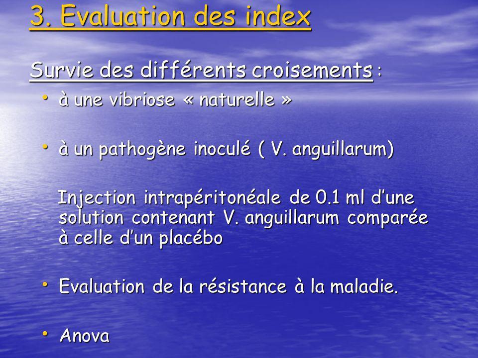 3. Evaluation des index Survie des différents croisements :