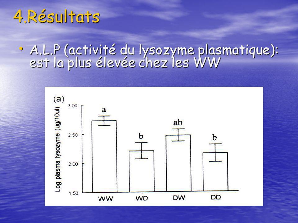 4.Résultats A.L.P (activité du lysozyme plasmatique): est la plus élevée chez les WW