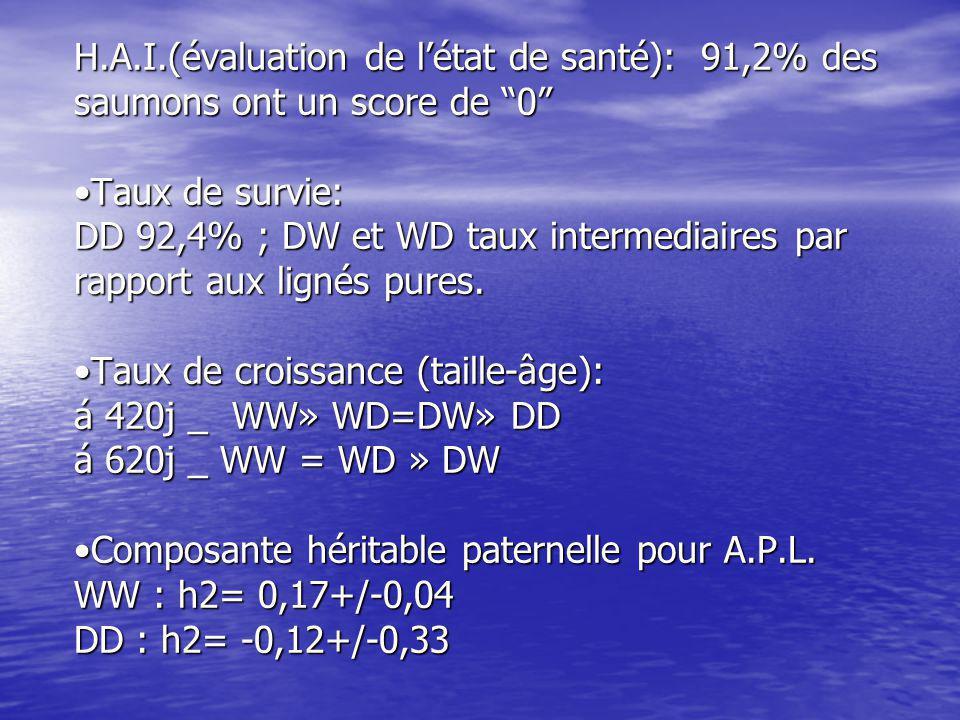 H.A.I.(évaluation de l'état de santé): 91,2% des saumons ont un score de 0 •Taux de survie: DD 92,4% ; DW et WD taux intermediaires par rapport aux lignés pures.