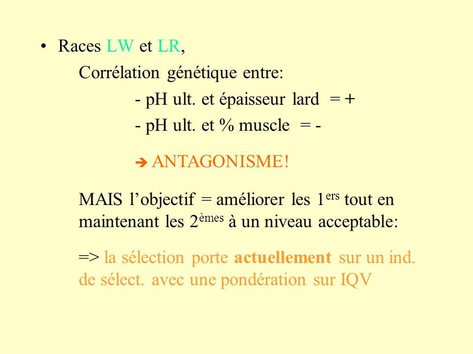 Corrélation génétique entre: - pH ult. et épaisseur lard = +