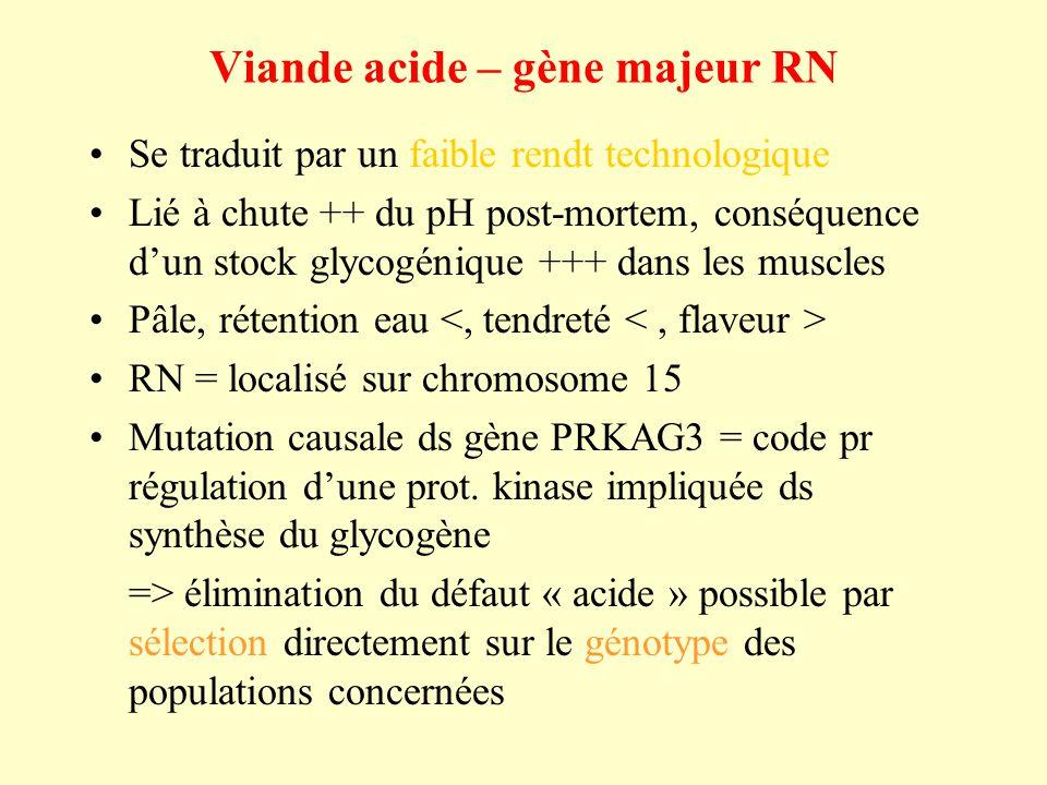 Viande acide – gène majeur RN