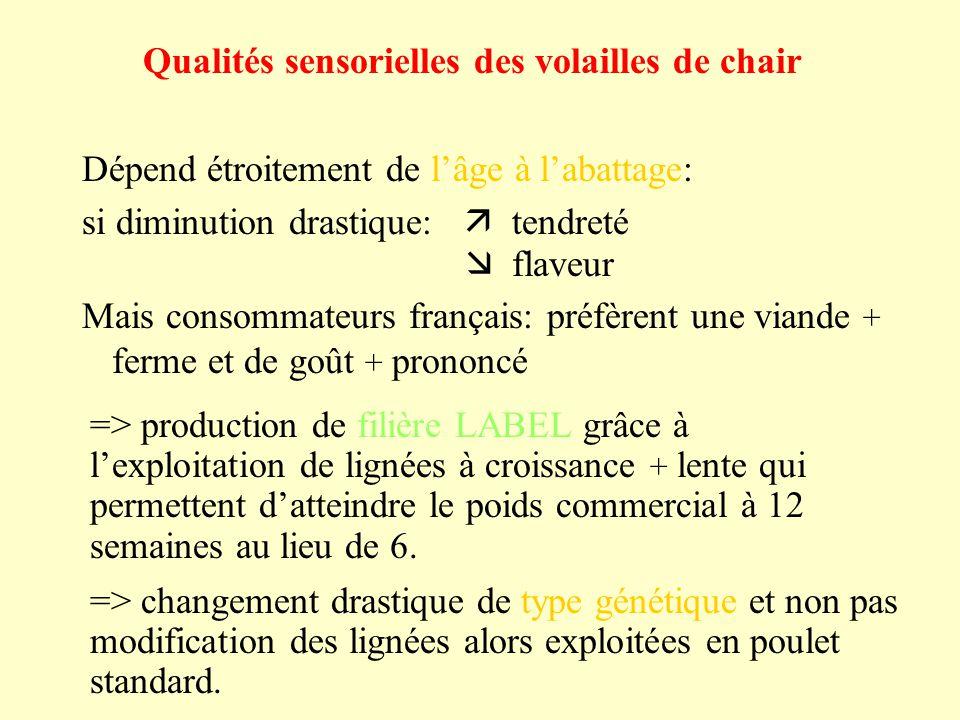 Qualités sensorielles des volailles de chair