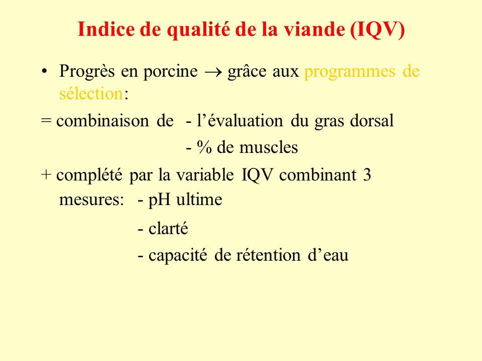 Indice de qualité de la viande (IQV)