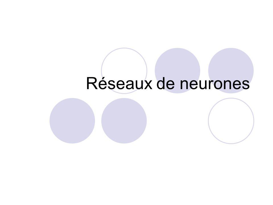 Réseaux de neurones