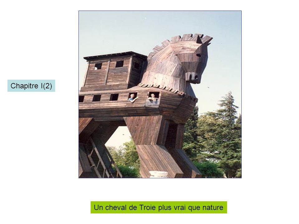 Chapitre I(2) Un cheval de Troie plus vrai que nature