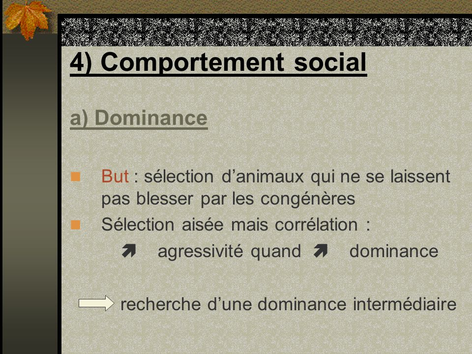 4) Comportement social a) Dominance