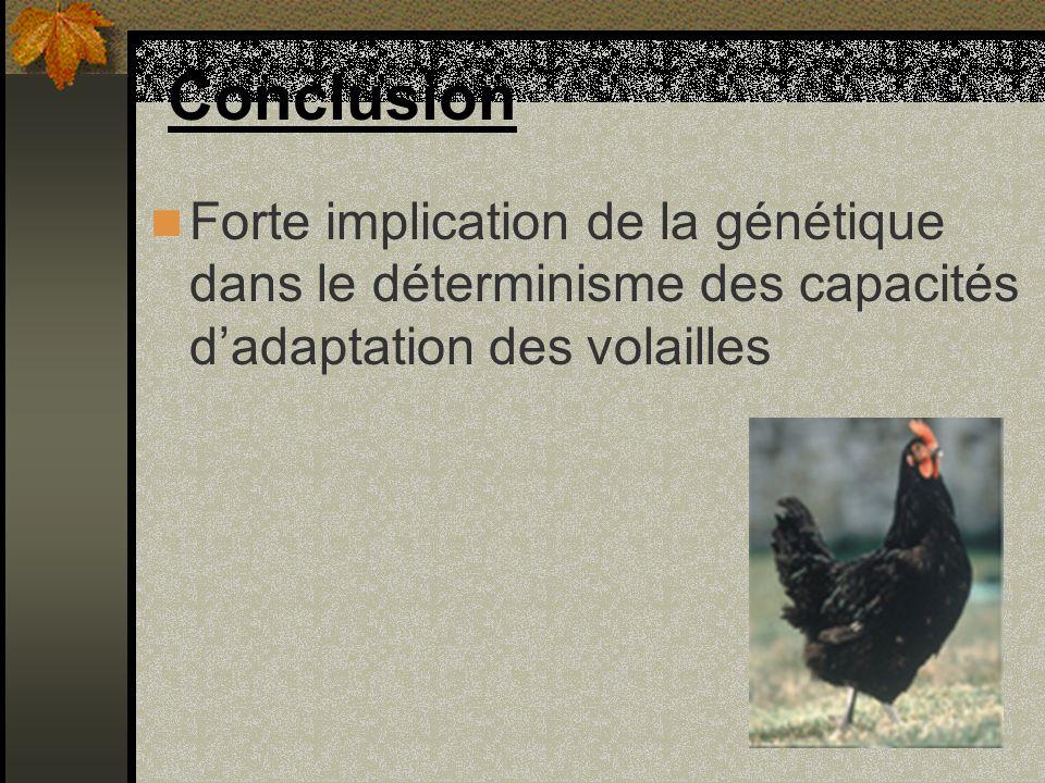 Conclusion Forte implication de la génétique dans le déterminisme des capacités d'adaptation des volailles.