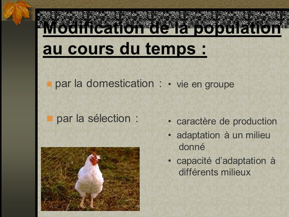 Modification de la population au cours du temps :
