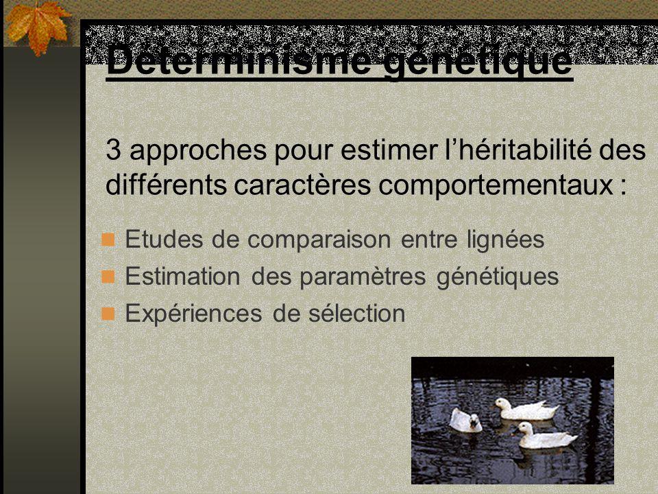Déterminisme génétique 3 approches pour estimer l'héritabilité des différents caractères comportementaux :