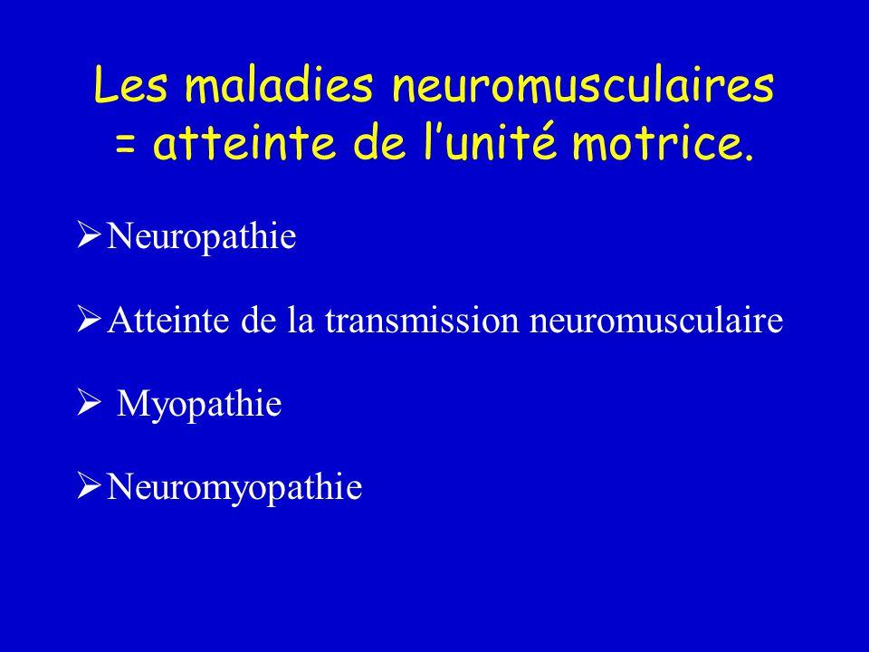 Les maladies neuromusculaires = atteinte de l'unité motrice.
