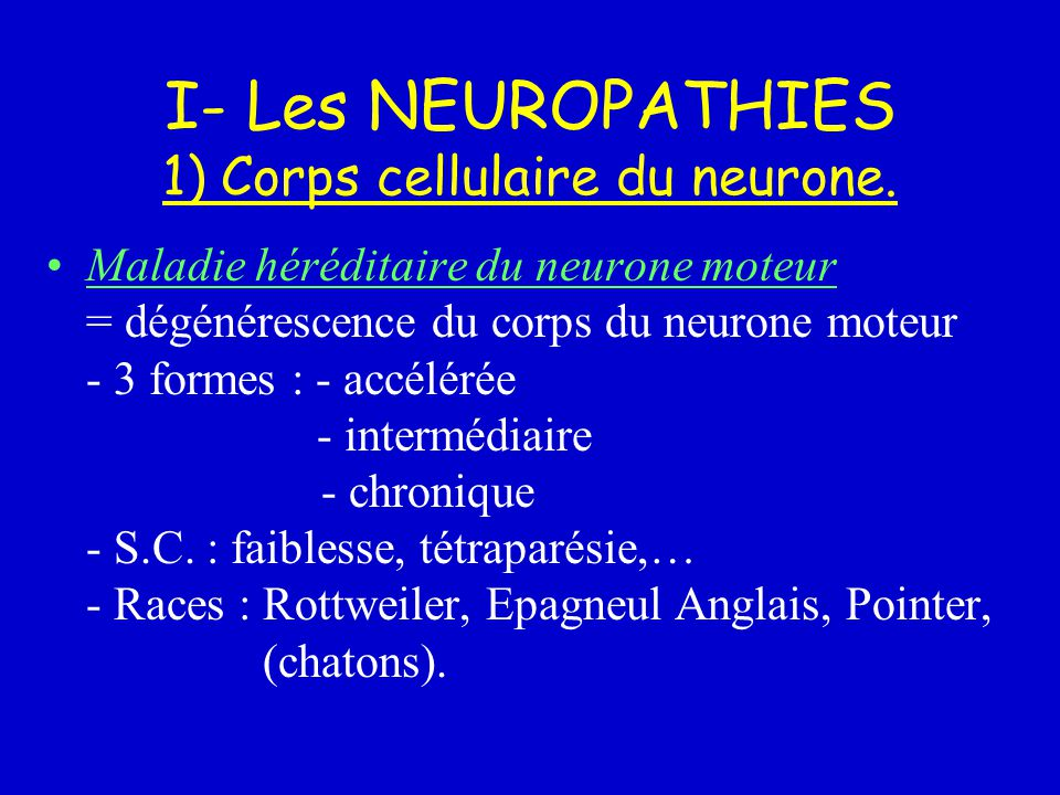 I- Les NEUROPATHIES 1) Corps cellulaire du neurone.