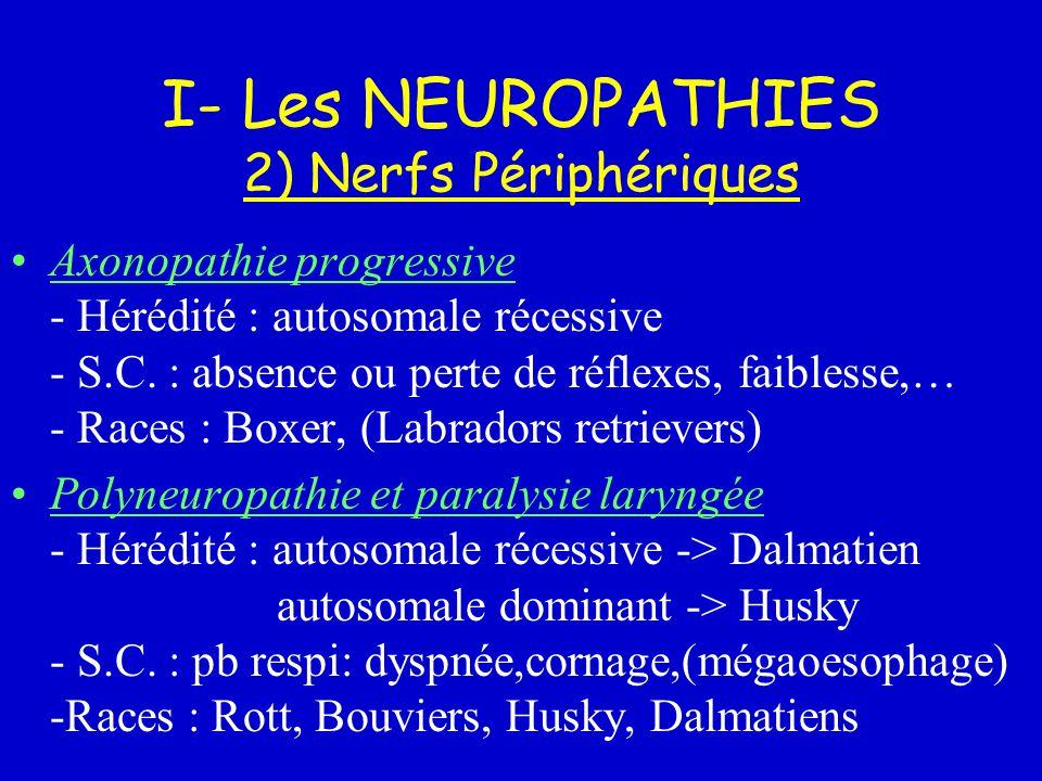 I- Les NEUROPATHIES 2) Nerfs Périphériques
