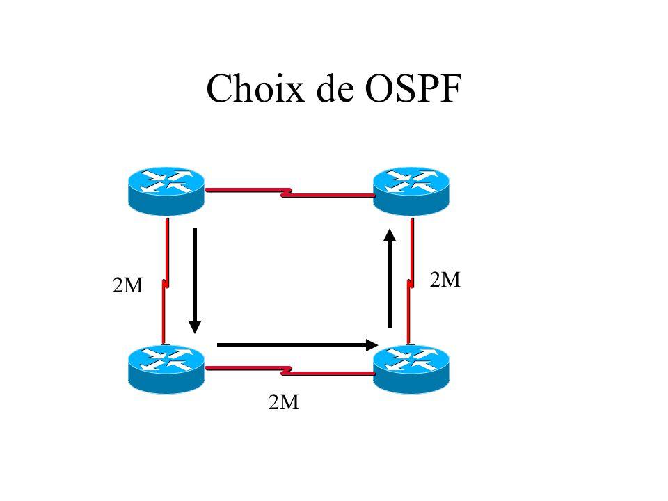 Choix de OSPF 2M