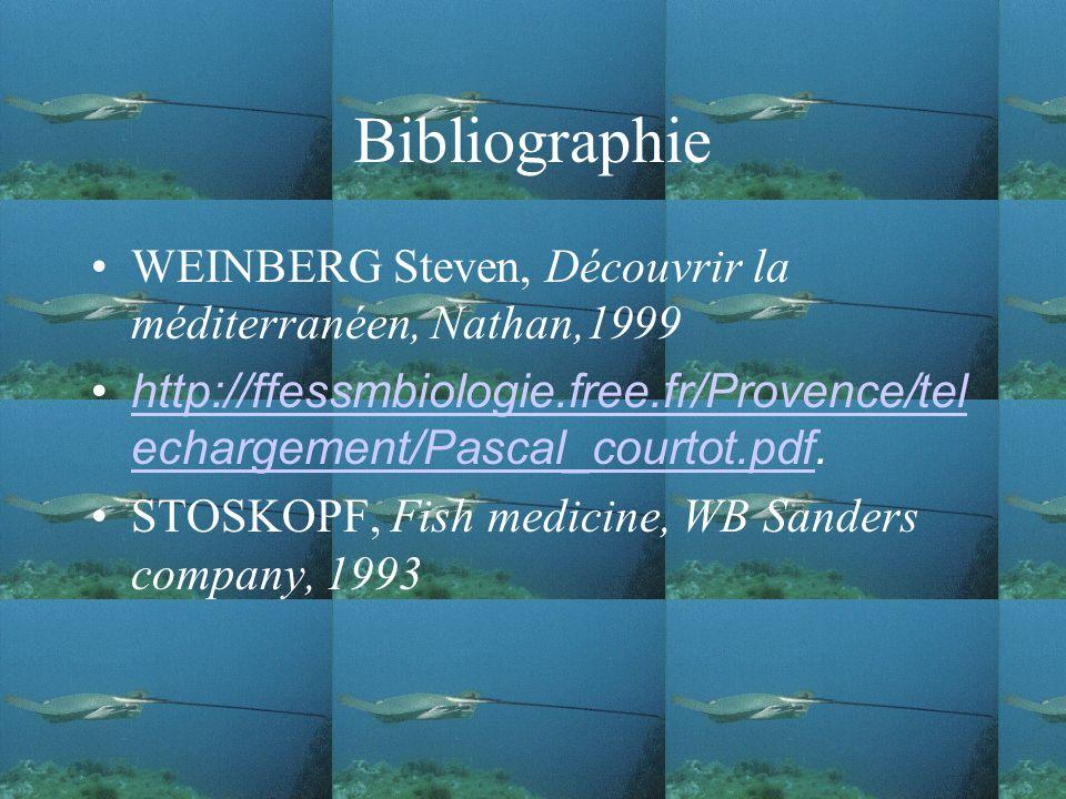 Bibliographie WEINBERG Steven, Découvrir la méditerranéen, Nathan,1999