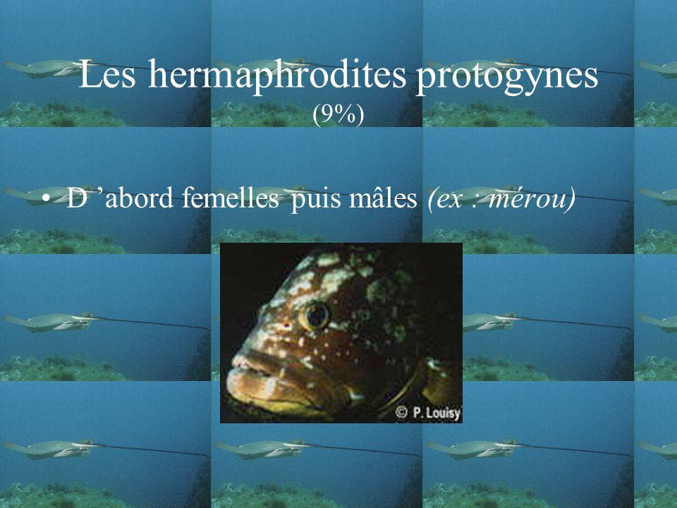 Les hermaphrodites protogynes (9%)
