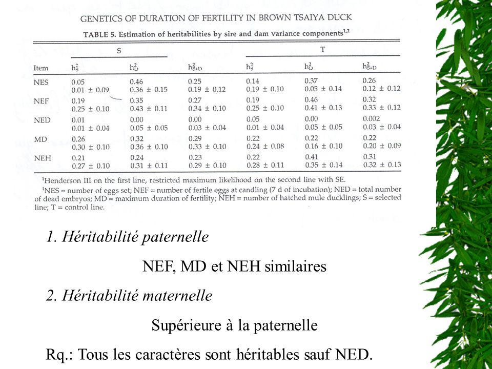 1. Héritabilité paternelle NEF, MD et NEH similaires
