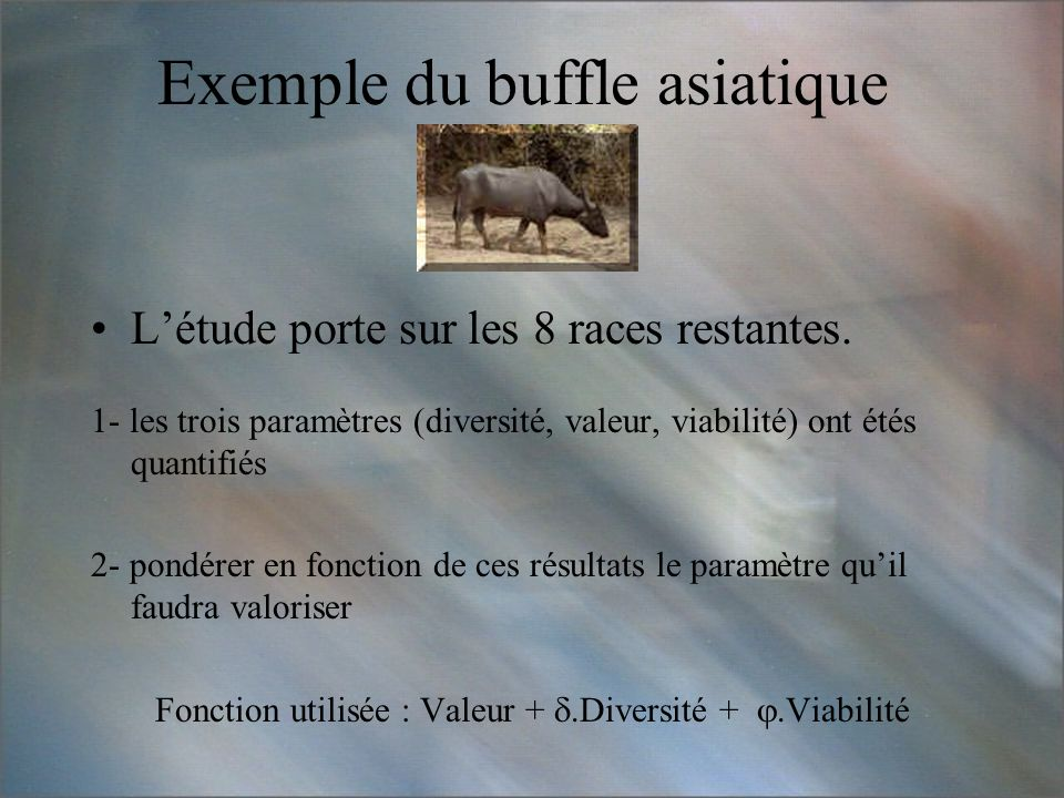 Exemple du buffle asiatique