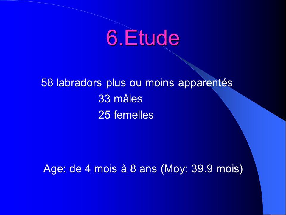 6.Etude 58 labradors plus ou moins apparentés 33 mâles 25 femelles