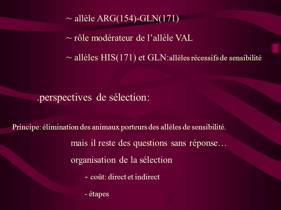 .perspectives de sélection: