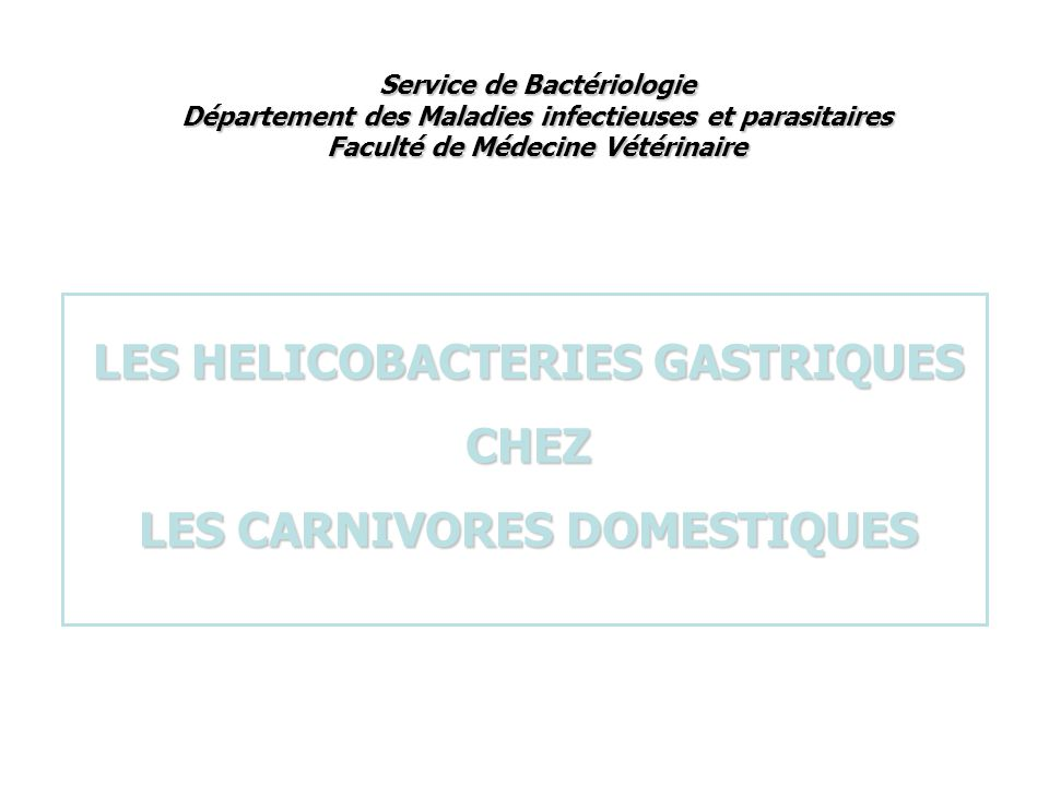 LES HELICOBACTERIES GASTRIQUES LES CARNIVORES DOMESTIQUES