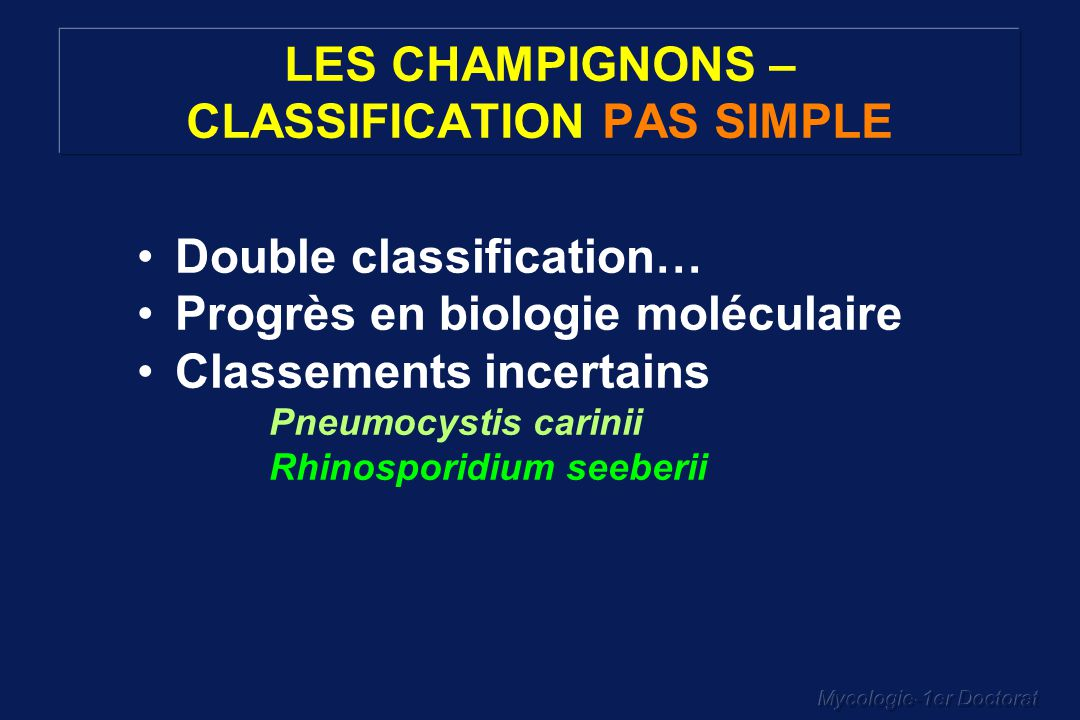 LES CHAMPIGNONS – CLASSIFICATION PAS SIMPLE