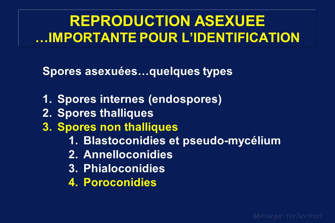 REPRODUCTION ASEXUEE …IMPORTANTE POUR L'IDENTIFICATION