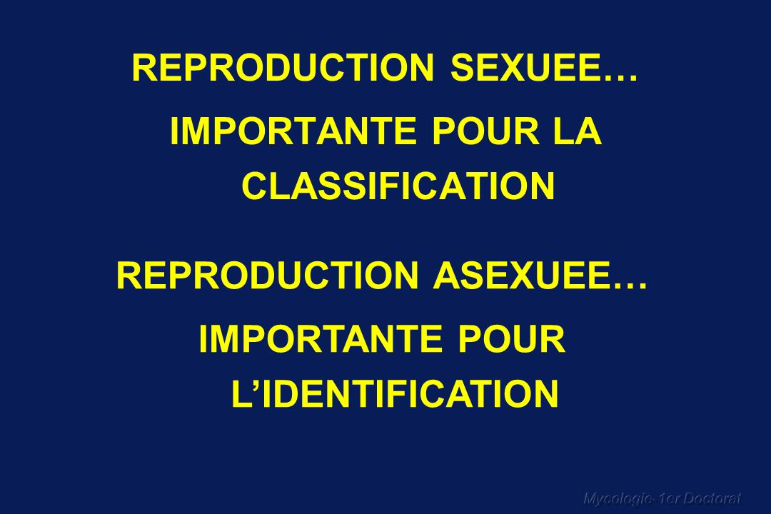 IMPORTANTE POUR LA CLASSIFICATION