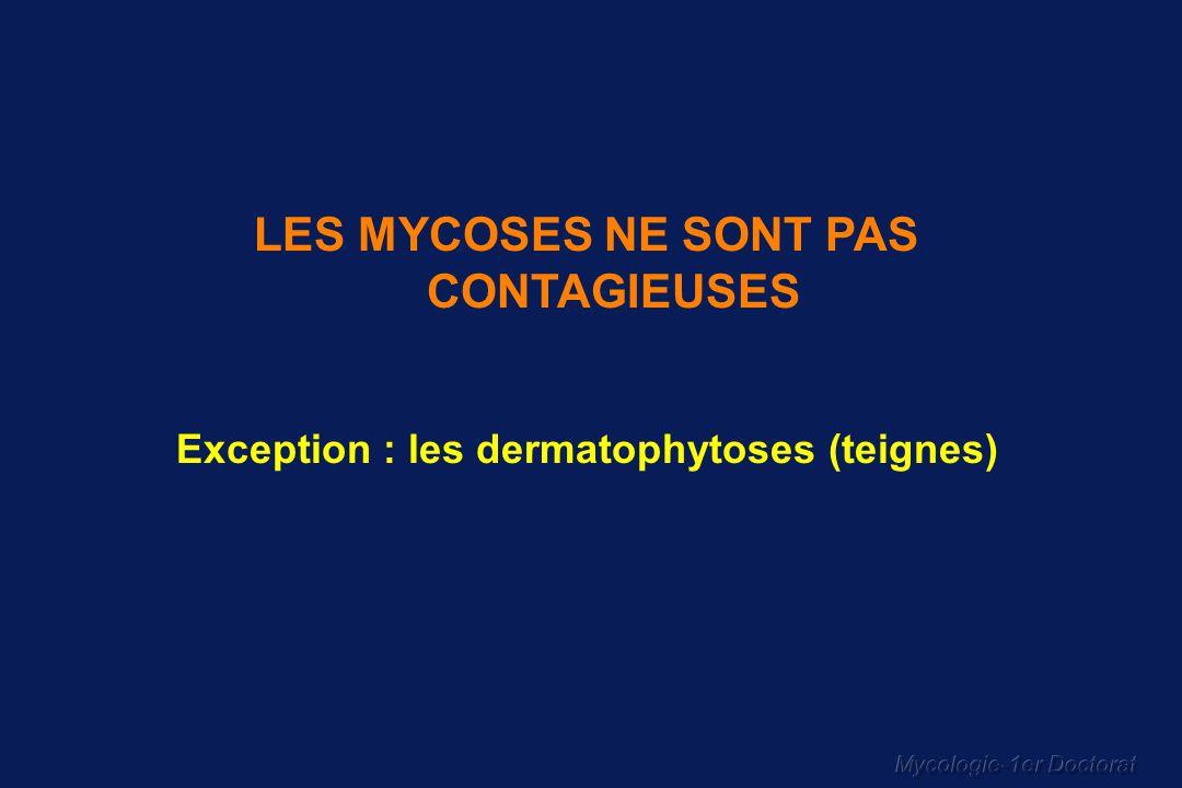 LES MYCOSES NE SONT PAS CONTAGIEUSES