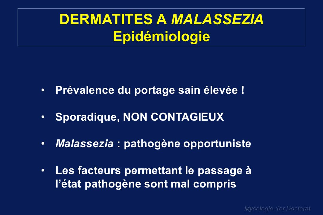 DERMATITES A MALASSEZIA Epidémiologie