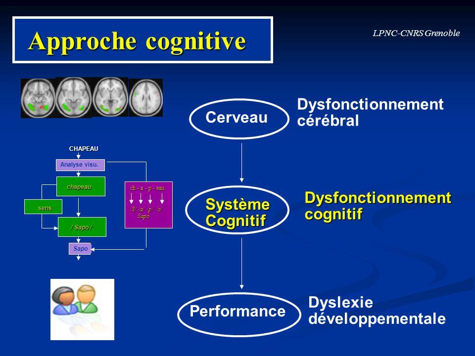 Approche cognitive Dysfonctionnement cérébral Cerveau