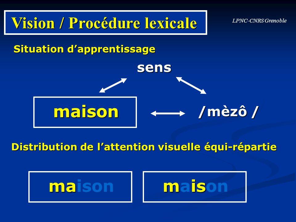 Vision / Procédure lexicale