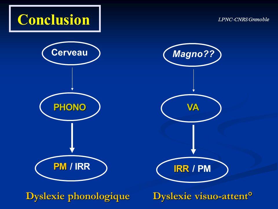 Conclusion Dyslexie phonologique Dyslexie visuo-attent° Cerveau