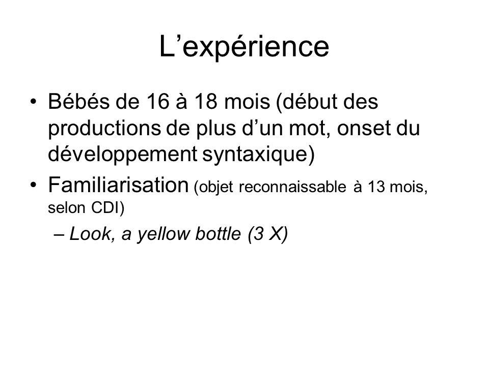L'expérience Bébés de 16 à 18 mois (début des productions de plus d'un mot, onset du développement syntaxique)